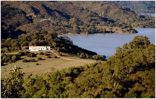 Finca for sale in Castellar de la Frontera